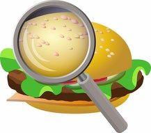 LES VOEDING (tweede graad). Belgen zijn vleeseters, en wel van de grootste ter wereld. Maar professor Pachauri komt ons waarschuwen voor al dat vlees: het is niet zo gezond als we denken, ook niet voor de aarde. Die  moet nogal wat verdragen omdat wij veel én goedkoop én lekker voedsel en vlees op ons bord willen: vervuiling, bemesting, giftige stoffen, …