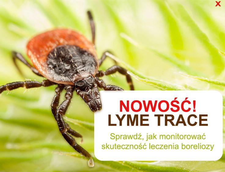 Test Lyme Trace służy do oceny skuteczności leczenia Boreliozy. boreliozaonline.pl