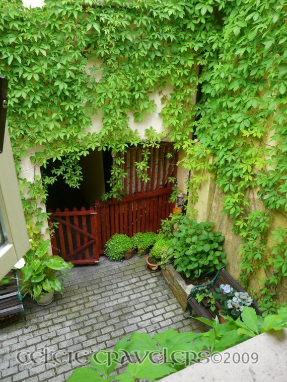 a small courtyard