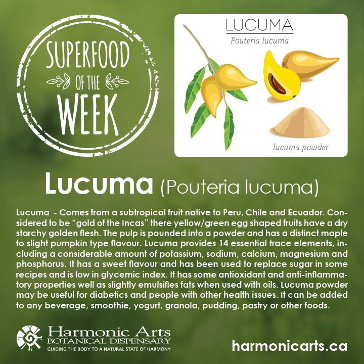 """Lucuma - Is a subtropical fruit native to Peru, Chile and Ecuador. Considered to be """"gold of the Incas"""" there yellow/green egg shaped fruits have a dry starchy golden flesh. The pulp is pounded into a powder and has a distinct maple to slight pumpkin type flavour. Lucuma provides 14 essential trace elements, including a considerable amount of potassium, sodium, calcium, magnesium and phosphorus. It has a sweet flavour and has been used to replace sugar in some recipes."""