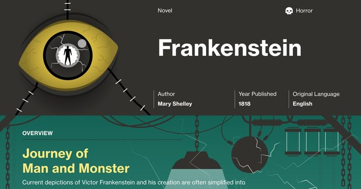 Mary Shelley's Frankenstein Infographic to help you understand everything about the book. Visually learn all about the characters, themes, and Mary Shelley.