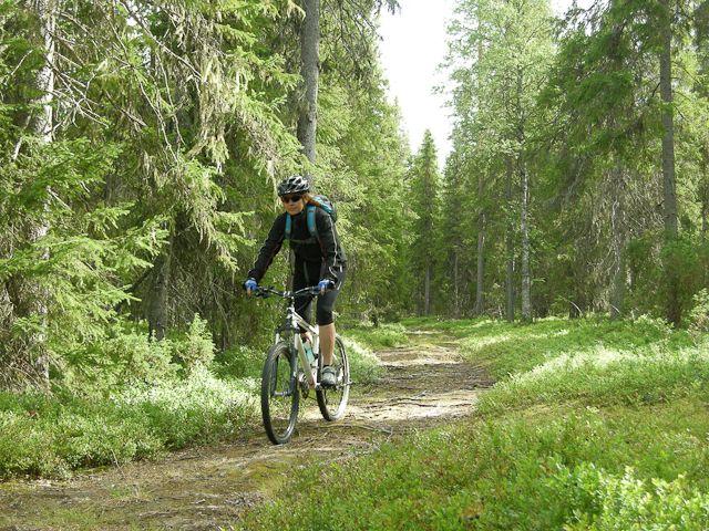 hirvipirtit lapland cabins, Taivalkoski Finland, biking in the Nationalpark Syöte