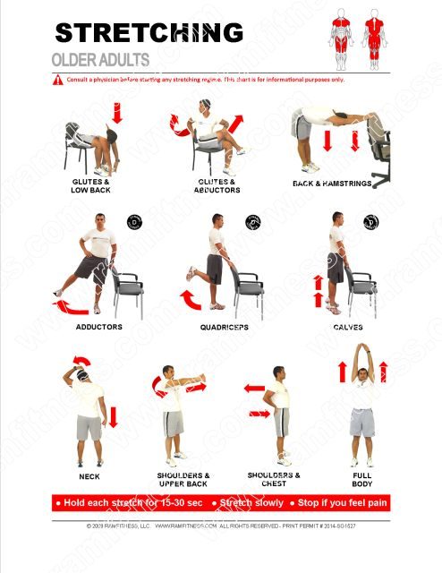 """Stretching Guides - 8.5"""" x 11"""" 