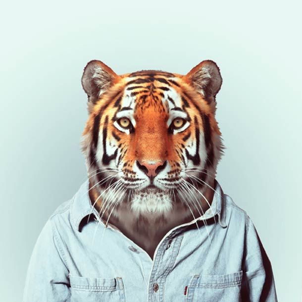 """Zoo Portraits"""", un projet du photographe Yago Partal, qui mélange photographie de mode et animaux"""