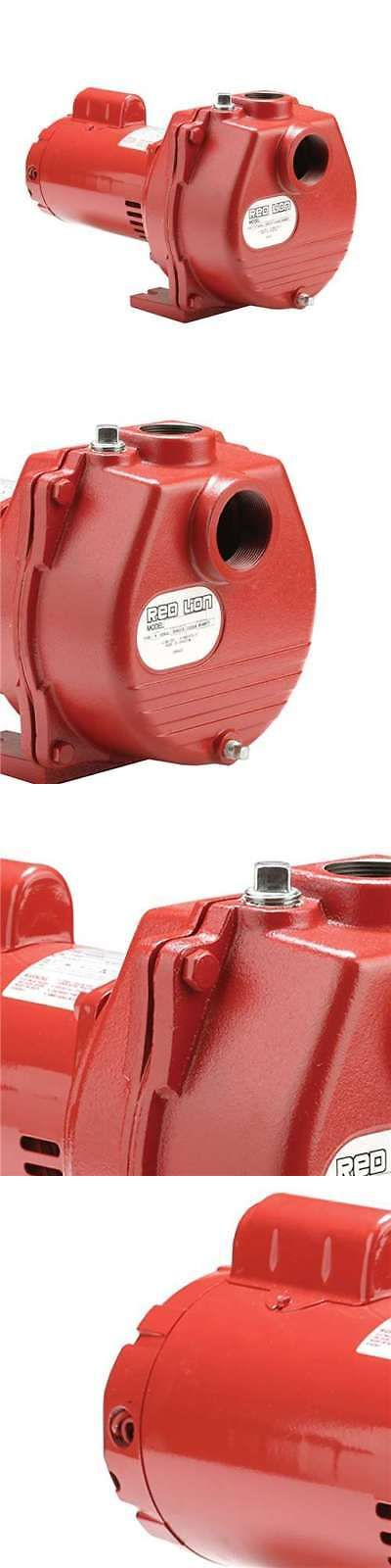 Water Pumps and Pressure Tanks 118851: Red Lion 1.5 Horsepower 71 Gpm Cast Iron Irrigation Sprinkler Pump | Open Box -> BUY IT NOW ONLY: $257.95 on eBay!