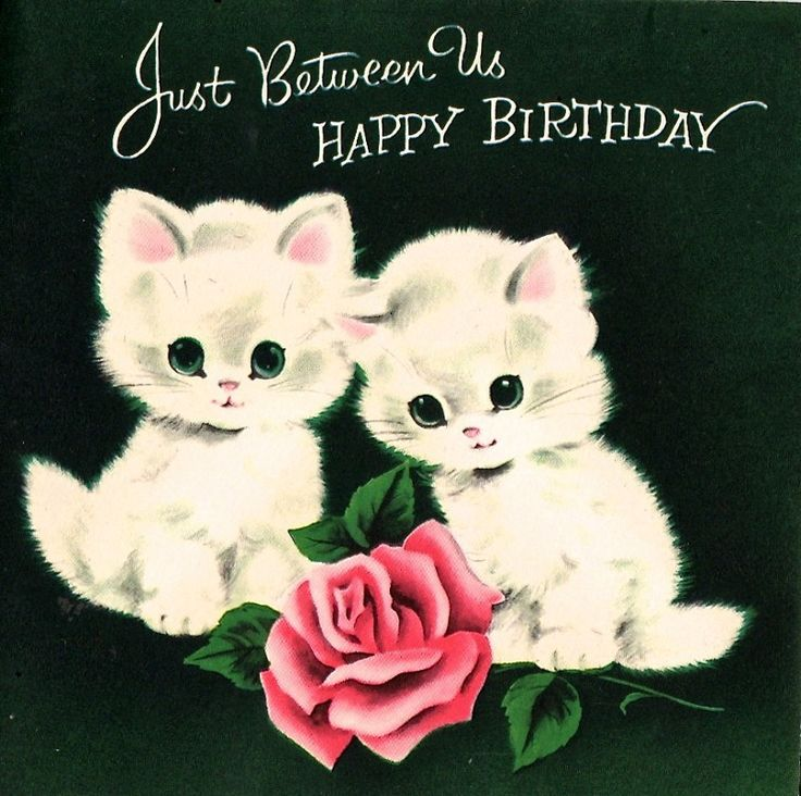 Happy Birthday Kittens With A Rose