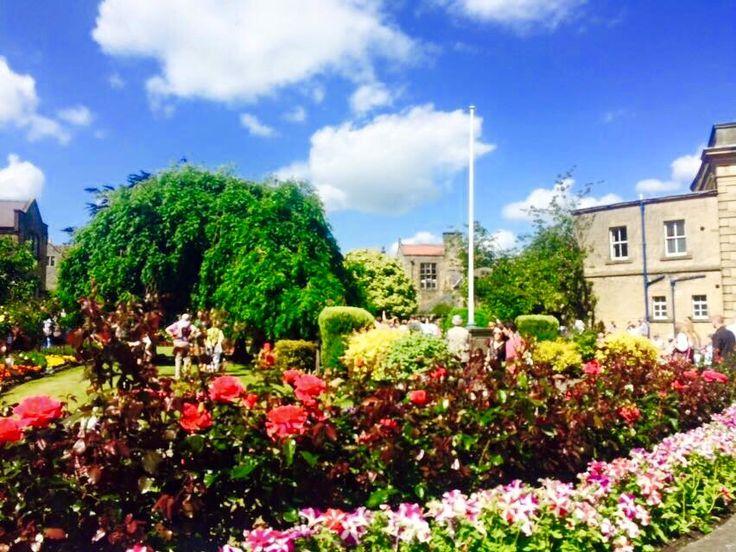 Flowers in bloom, Bakewell, Derbyshire