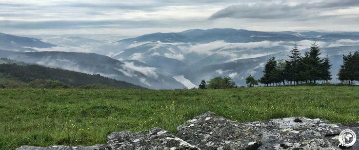 Il Cammino Primitivo: 320 km lungo il primo pellegrinaggio jabobeo della storia, che da Oviedo, in intimità tra natura e boschi, giunge al Campus Stallae