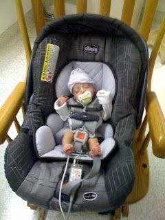 Image Result For Infant Car Seat Preemie