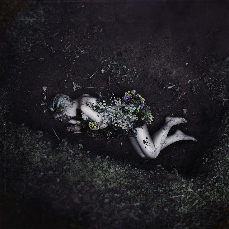 картинки цветы мрака мема быстра