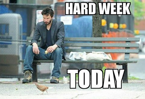 NEW PODCAST: Hard Week Today  Listen here ---> http://contentsavage.com/2017/05/hard-week-today-podcast-7-may-12-2017/  #savage #comedy #funny #parody #laugh #music #sports #news #trump #nfl #beer #wine #outdoors #walk #dogs #dogsofinstagram #cats #catsofinstagram #money #fight #espn #celebrity #science #movies #book #standup #meme #offensive #offensivememes#podcast http://tipsrazzi.com/ipost/1514839996702483131/?code=BUFyvN3AWK7