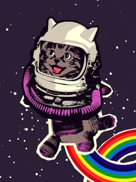 space cat  by Sjoerd Piepenbrink