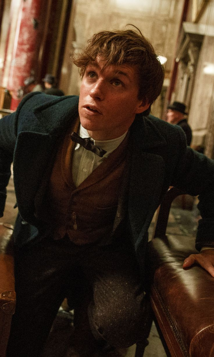 The First Trailer For Fantastic Beasts and Where to Find Them Is Here!