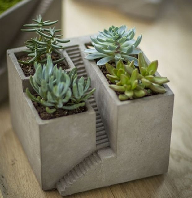 Plants are an integral contribution to any home, so when you welcome a new plant friend into your house, make sure they have the right accommodations.