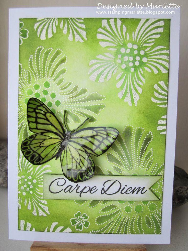 Magenta butterfly + text Carpe Diem