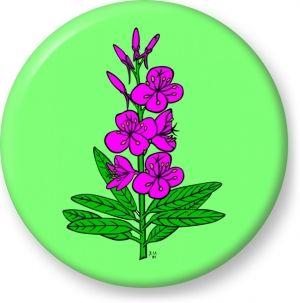 Epilobium angustifolium vector - Button Badge - Brooch - Gift