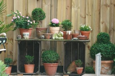 Table for plants, made out of old crates #garden