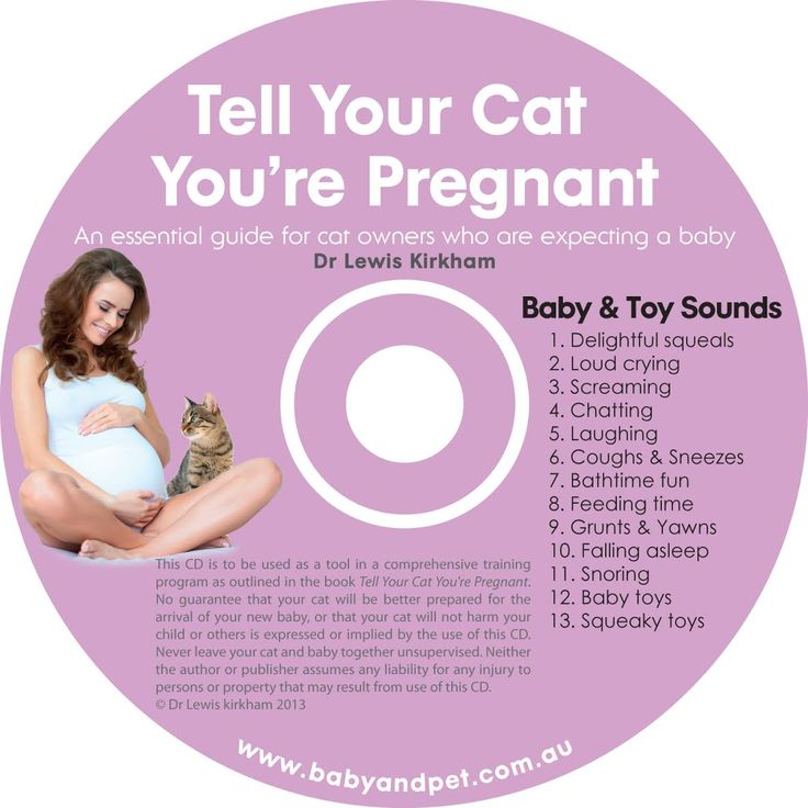 Baby and Toy Sounds for Cats - Baby and Pet