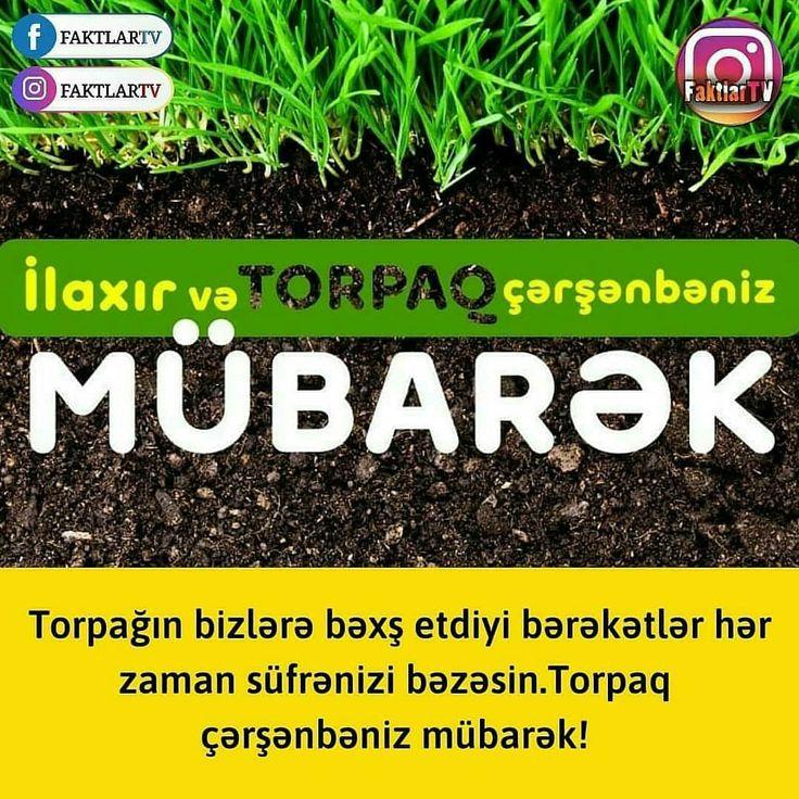 Ilaxir Və Torpaq Cərsənbəniz Mubarək Herbs Food Dill