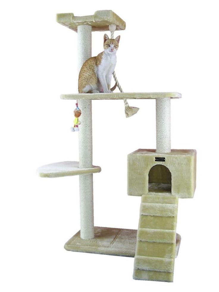 savannah cat prices