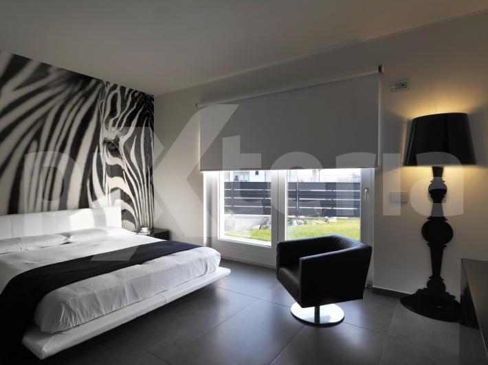 Fototapete, Poster, Aufkleber - Zebra, Tiere, schöne schwarz-weiße Wanddekorationen - www.pixteria.de