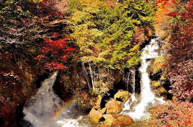 秋に行きたい【栃木】おすすめ観光スポット19選!紅葉スポットも! @jalannet