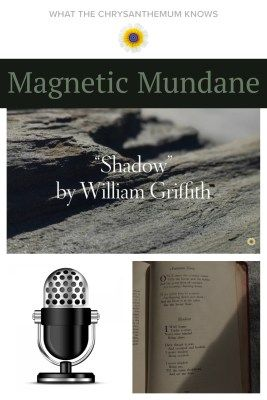 """""""Shadow 
