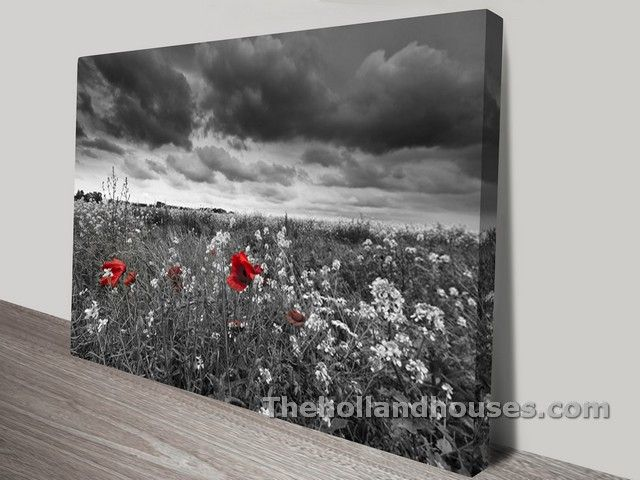 Black White And Red Canvas Wall Art