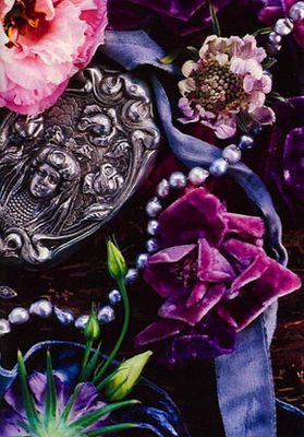 Violet velvet rose