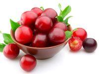 Food Basics: Plums - Potent Superfoods