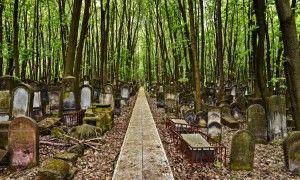 Warszawa, której nie ma – spacer z przewodnikiem po Cmentarzu Żydowskim