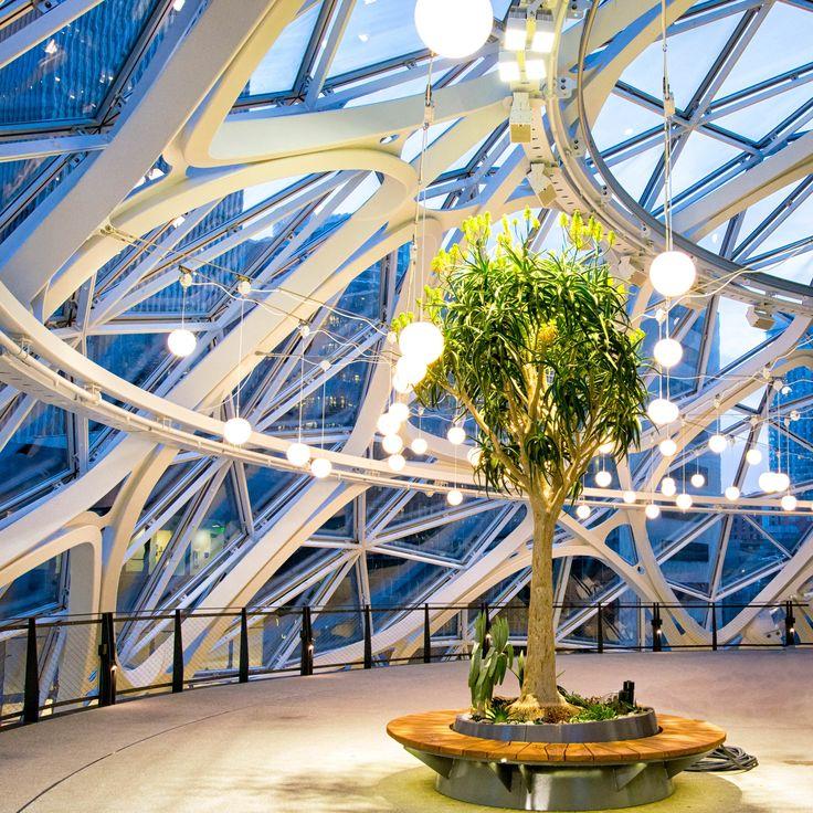 Amazon Spheres in Seattle 22216 best Design