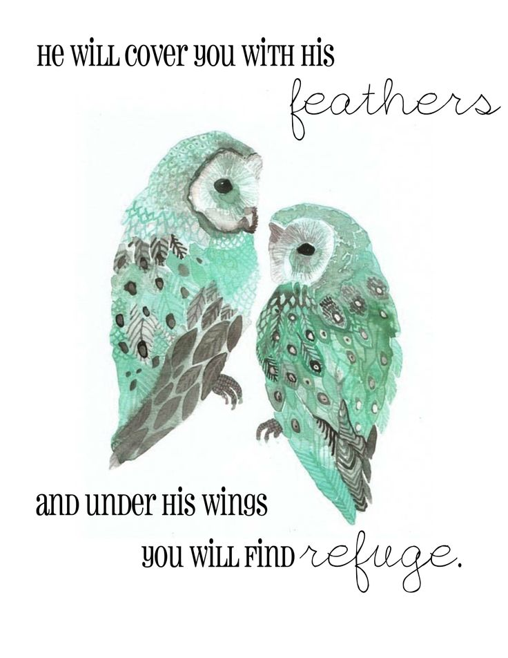 "#Scripture Psalm 91:4 -- "" He will cover you with His feathers and under His wings you will find refuge."""