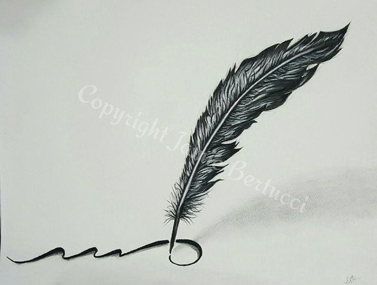 "Original 9x12 Charcoal & Pencil Feather Quill Drawing of ""Write Your Own Story"" (c) 2016 Jamie Bertucci #illustration #art #feather"