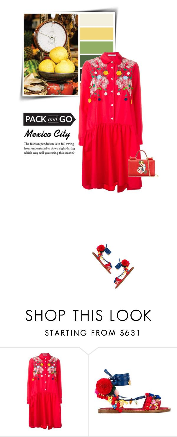 """Pack &Go: Mexico City"" by sophiek82 ❤ liked on Polyvore featuring VIVETTA and Dolce&Gabbana"