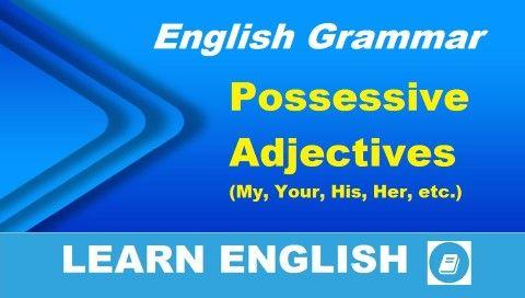 Angol nyelvtan lecke magyarázattal, videóval és gyakorló feladattal. Az angol birtokos szerkezet képzése birtokos jelzők használatával: my, your, his, her, its, our, their.