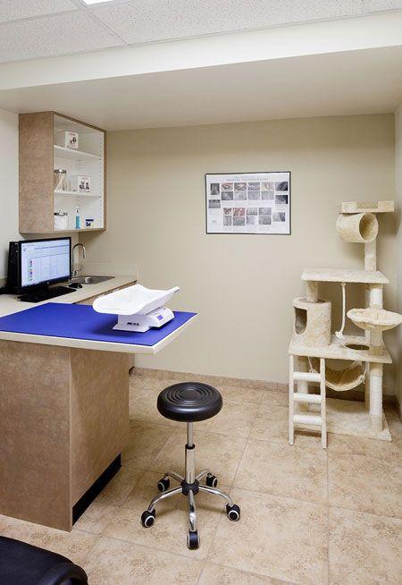 Veterinary exam room evolution