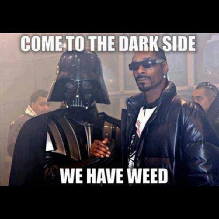 Yes Please Funny Meme : Yes please twenty pinterest weed humor stoner and