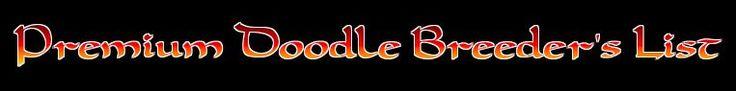 Goldendoodle & Labradoodle Breeders Kennels