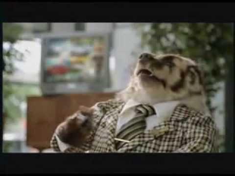 Badger Salesman Commercial Wwwpicturessocom