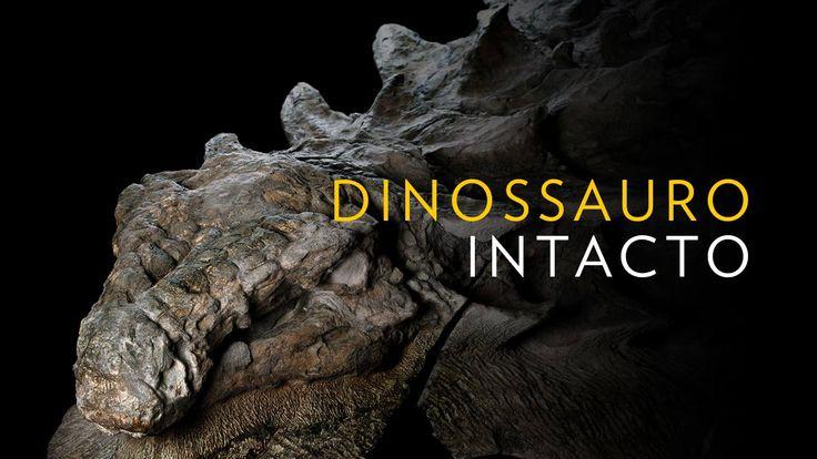 Nunca antes na história deste mundo se encontrou um fóssil de dinossauro tão bem preservado. Os restos do nodossauro – um herbívoro encouraçado de 5,5 metros e 1 3000 quilos – foram descobertos por …