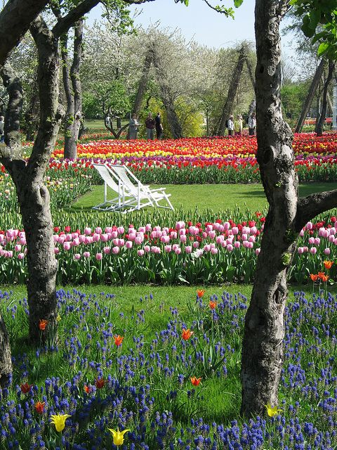 Britzer Garten (1) by visitBerlin, via Flickr © Grün Berlin
