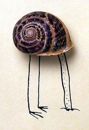 Serge Bloch. http://www.sergebloch.net/