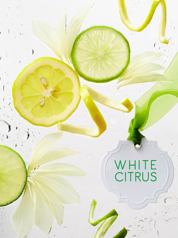46 Best Scented Plants Their Varieties In Gardening Zone: 46 Best Images About White Citrus On Pinterest