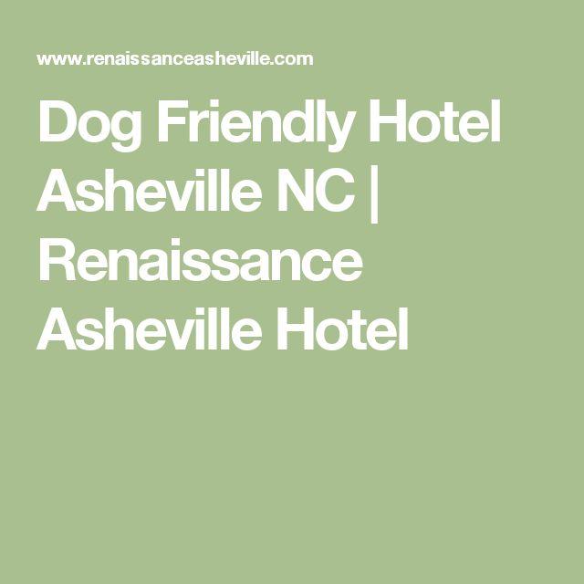 Off Leash Dog Park Asheville Nc