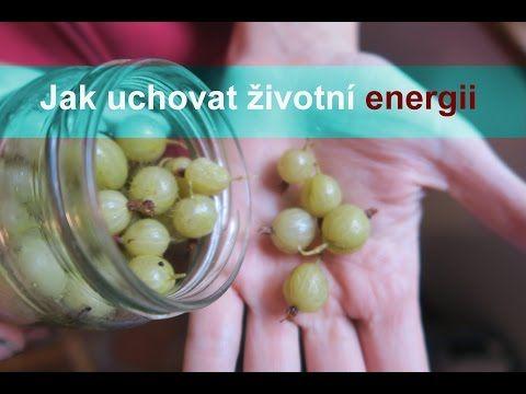 Anastázie, konzervace a životní energie I Síla pro život - YouTube