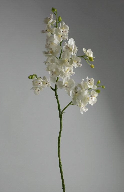 28 in. Branch Filled with Cream White Orchids $8.99 each / 6 for $8 each