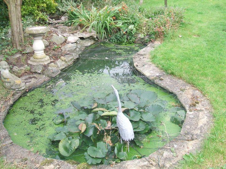 Concrete Water Pond | Garden Pond Design | The Garden Pond Blog