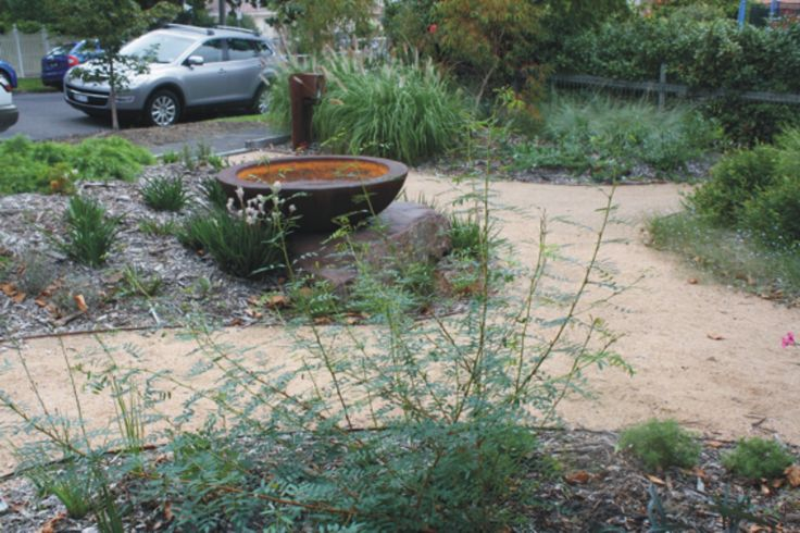 Native residential garden, Hawthorn East /  Botanical Traditions