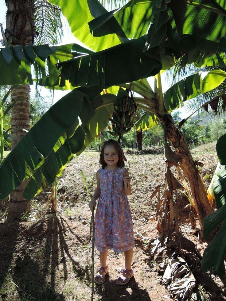 Sinaloa – pod palmą. fot. Paweł Trefler